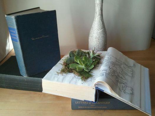 Succulent Book Gardens