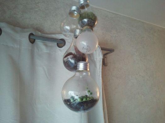 Re-Purposed Light Bulb Chandelier Gardens