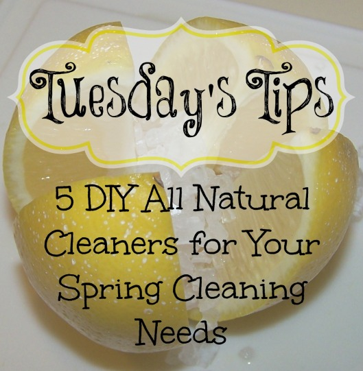 DIY Cleaners Post