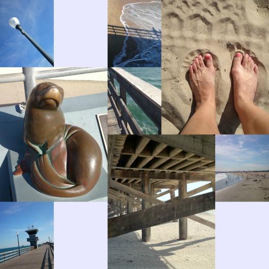 Seal Beach 2